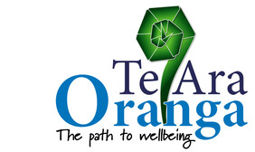 Te Ara Oranga: AOD education support Meth through NDHB
